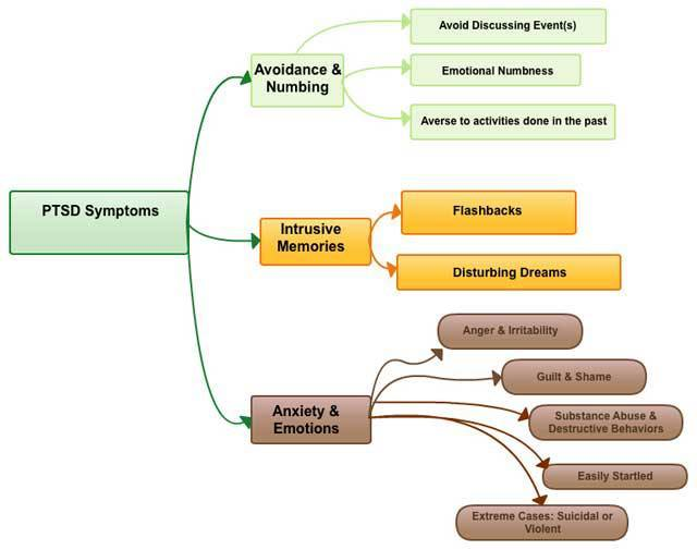 PTSD symptoms flow chart
