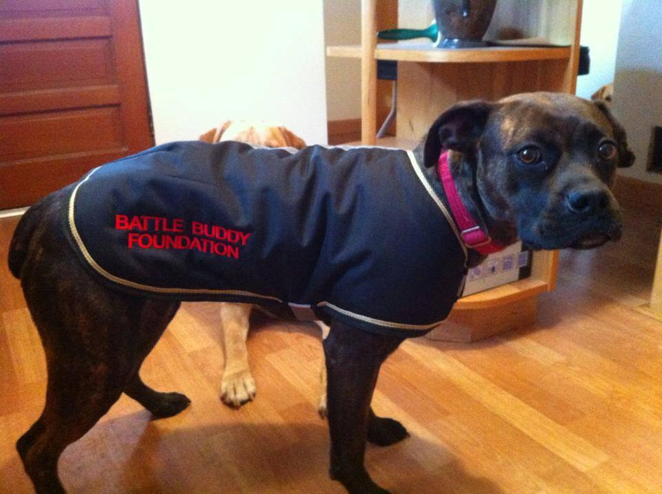 Odessa Battle Buddy Foundation Boxer