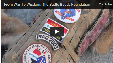 from war to wisdom video